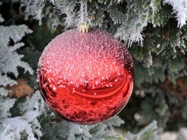 Weihnachtsnachruf